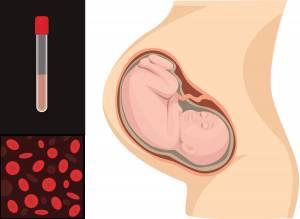 فقر الدم خلال الحمل